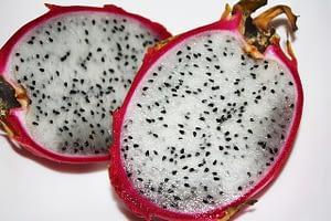 Superfoods wie die Drachenfrucht und wilde Heidelbeeren liefern wichtige Nährstoffe und Antioxidantien